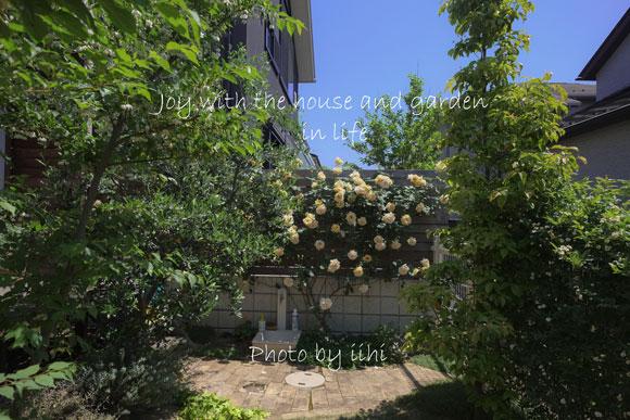 20150510-1joy-with-garden.jpg