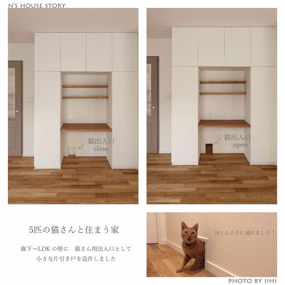catdoor_ss_nhouse.jpg