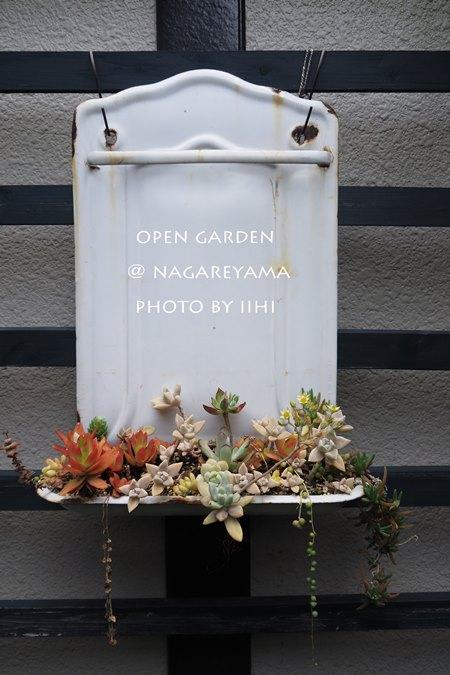 nagareyamaopengarden2015_19.jpg