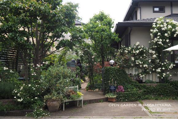 nagareyamaopengarden2015_30.jpg