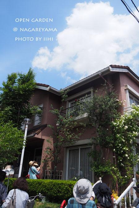 nagareyamaopengarden2015_32.jpg