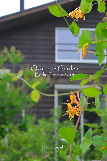 okanoiegarden018-2014e-summ.jpg