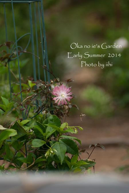 okanoiegarden1-2014e-summer.jpg