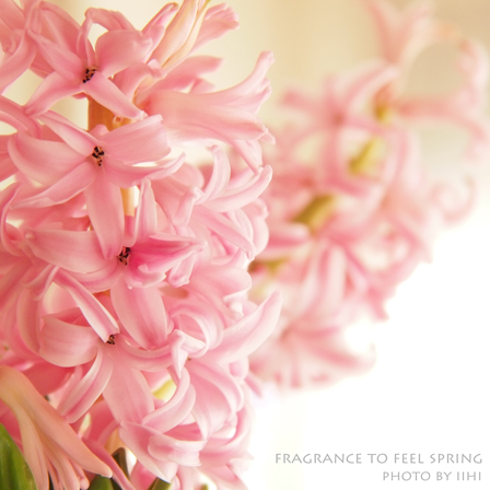 Fragrance-to-feel-spring.jpg