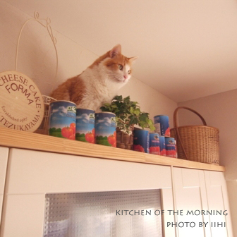 kitchen-of-the-morning.jpg