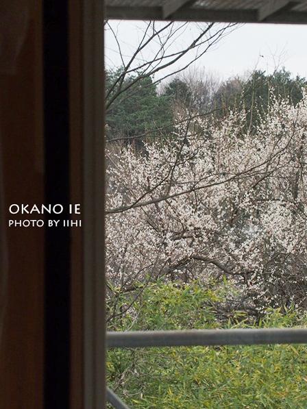 okanoie-mado201203_1.jpg