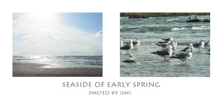 seaside2011.jpg