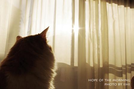 Hope-of-the-morning.jpg