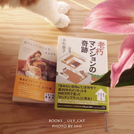 lily_book_cat2.jpg